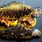Рыба фаршированная виноградом: французский рецепт